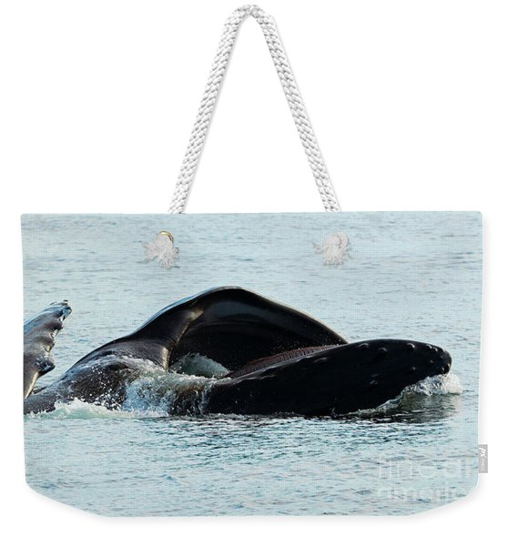 Lunge Fishing Weekender Tote Bag