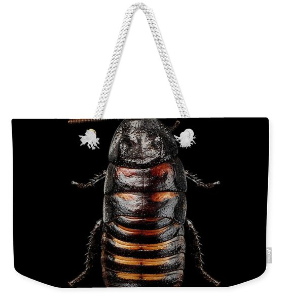 Madagascar Hissing Cockroach Weekender Tote Bag