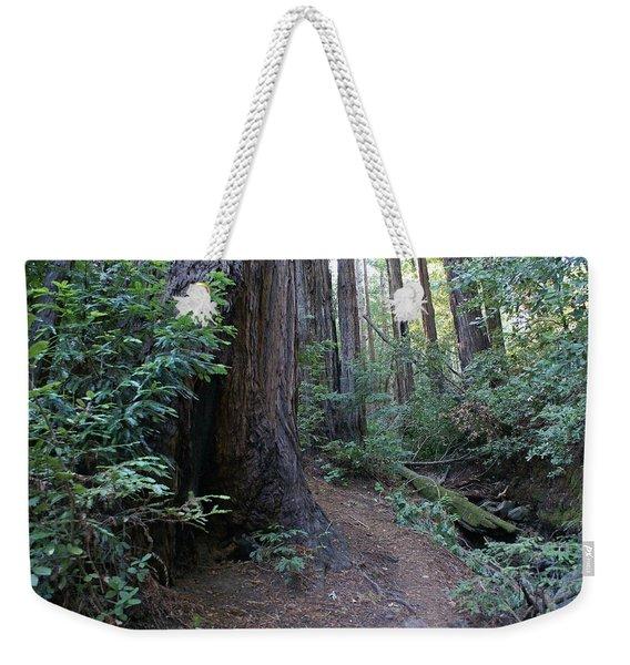 Magical Path Through The Redwoods On Mount Tamalpais Weekender Tote Bag