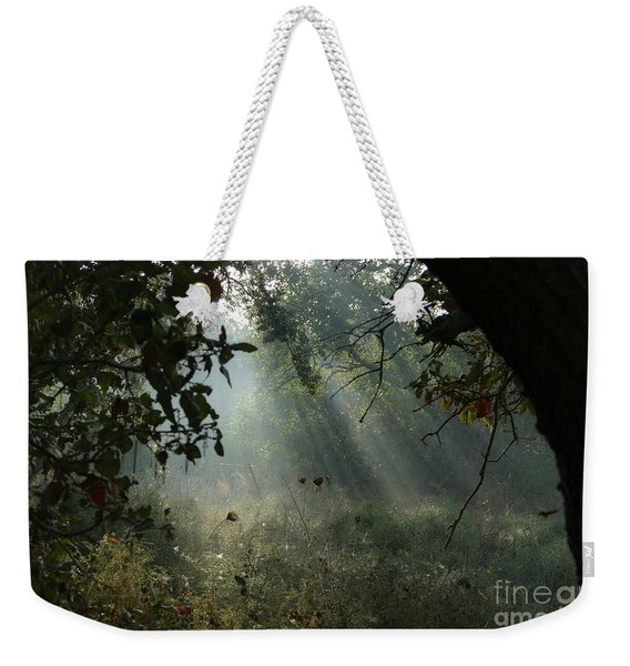 Weekender Tote Bag featuring the photograph Magical Woodland Lighting by Arik Baltinester