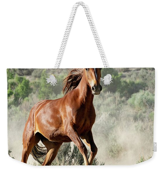 Magnificent Mustang Wildness Weekender Tote Bag