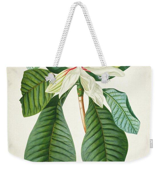 Magnolia Botanical Print Magnolia02 Weekender Tote Bag