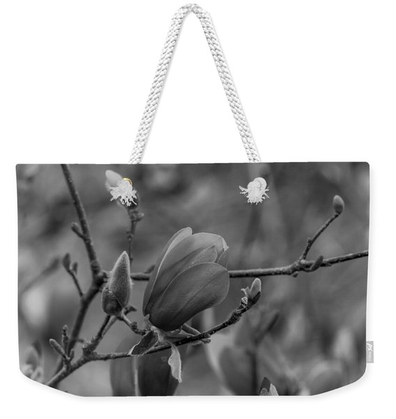 Magnolia Bw Blooms Buds Branches Weekender Tote Bag