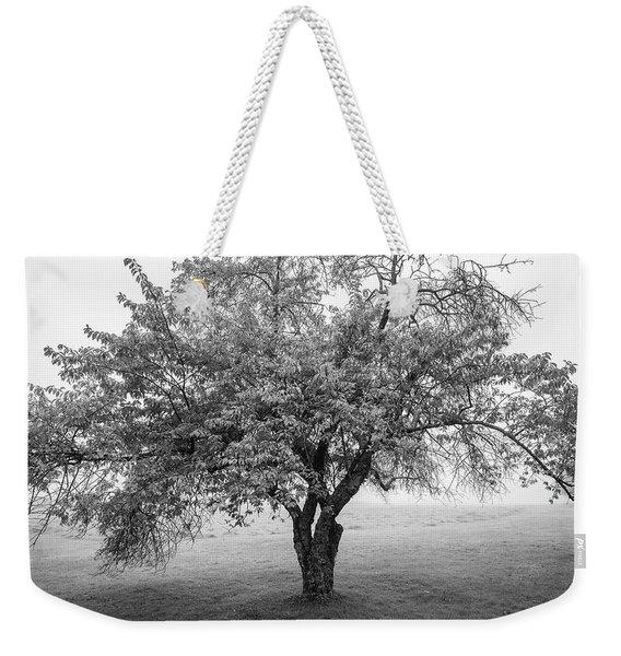 Maine Apple Tree In Fog Weekender Tote Bag