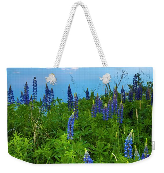 Weekender Tote Bag featuring the photograph Maine Field Of Lupines by Ranjay Mitra