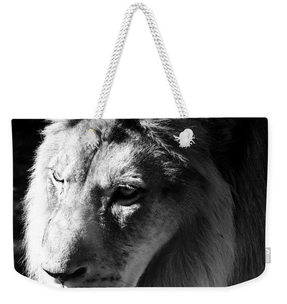 Majestic African Lion Head Eyes Face And Mane Black And White Weekender Tote Bag