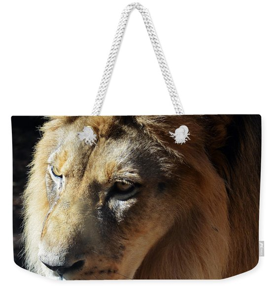 Majestic African Lion Head Eyes Face And Mane Weekender Tote Bag