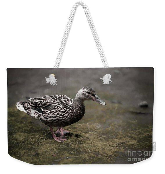Malard,duckling Weekender Tote Bag