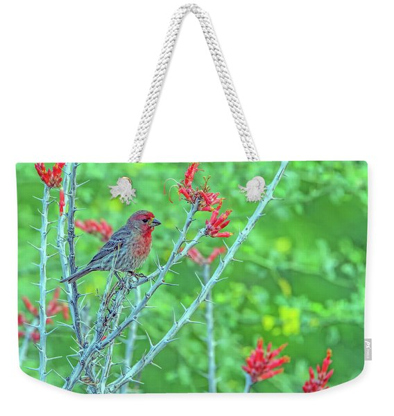 Male House Finch 8347 Weekender Tote Bag