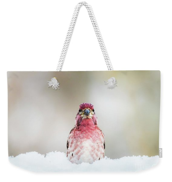 Male House Finch Weekender Tote Bag