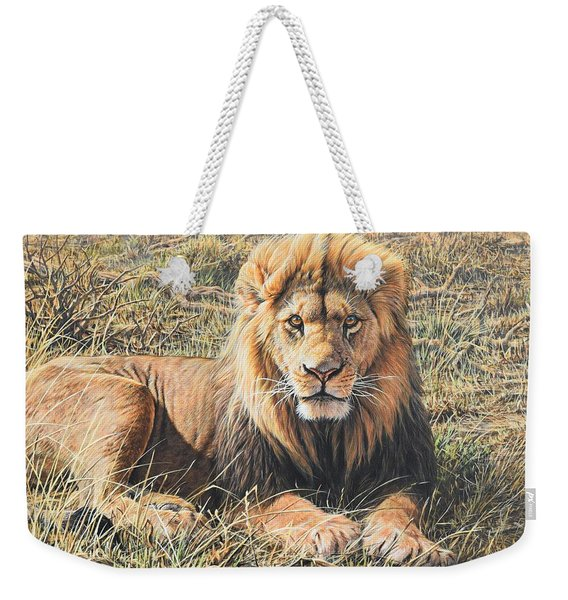 Male Lion Portrait Weekender Tote Bag