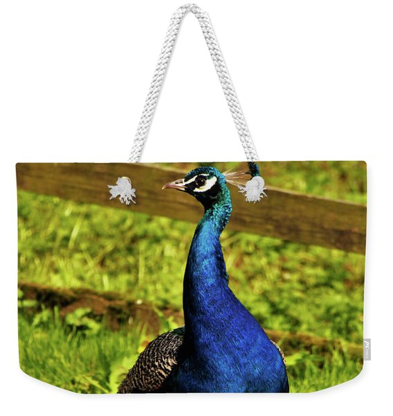 Male Peacock Weekender Tote Bag