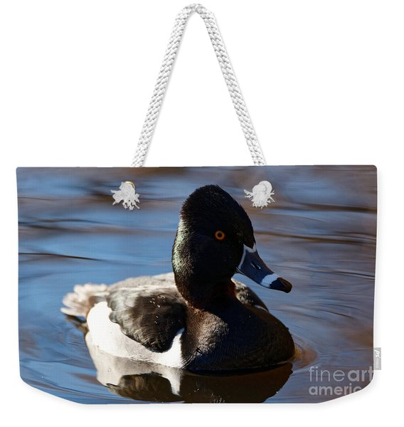 Male Ring-necked Duck Weekender Tote Bag