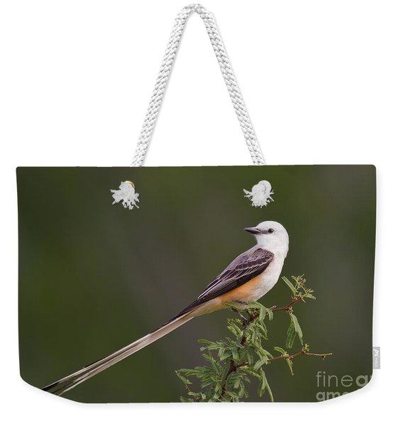 Male Scissor-tail Flycatcher Tyrannus Forficatus Wild Texas Weekender Tote Bag