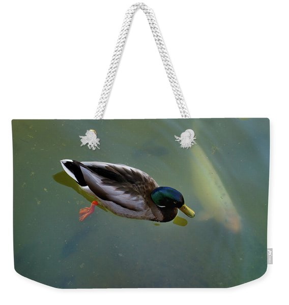 Weekender Tote Bag featuring the photograph Mallard And Carp by Ron Cline