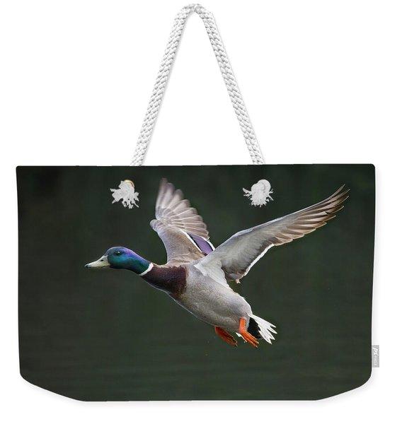 Mallard Drake In Flight Weekender Tote Bag