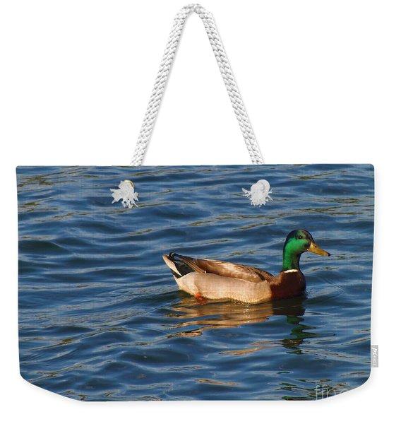 Mallard Drake Duck Swimming Weekender Tote Bag