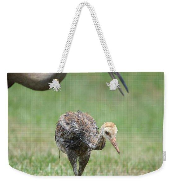 Mama And Juvenile Sandhill Crane Weekender Tote Bag