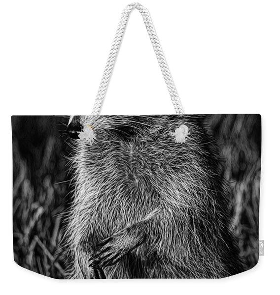 Mama Raccoon Weekender Tote Bag
