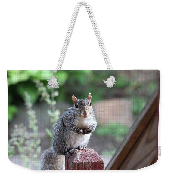 Mama Squirrel Weekender Tote Bag