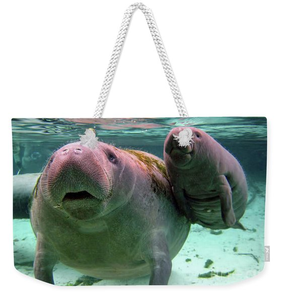Manatee Mom And Calf Weekender Tote Bag