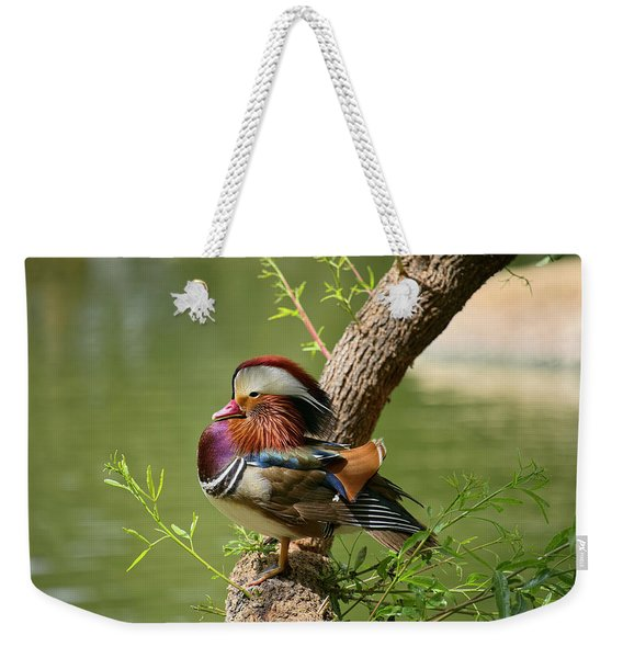 Mandarin Duck On Tree Weekender Tote Bag