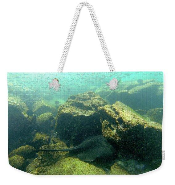 Manta Ray Under Rock Weekender Tote Bag