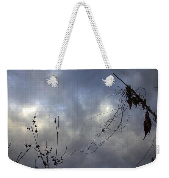 Mantis Weekender Tote Bag