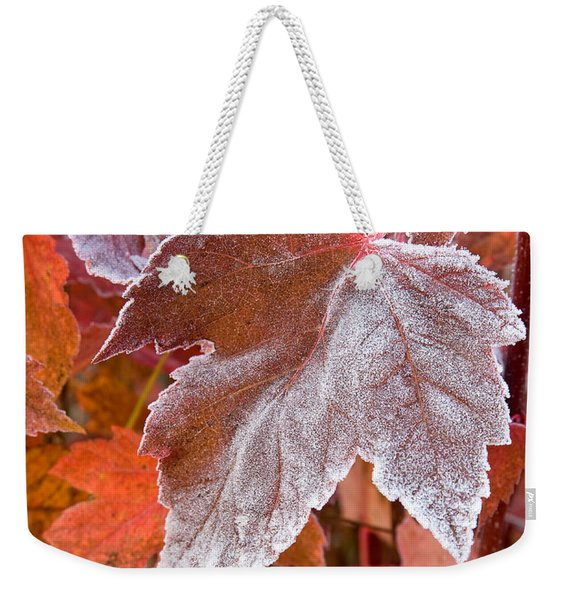 Weekender Tote Bag featuring the photograph Maple Frost  by Doug Gibbons