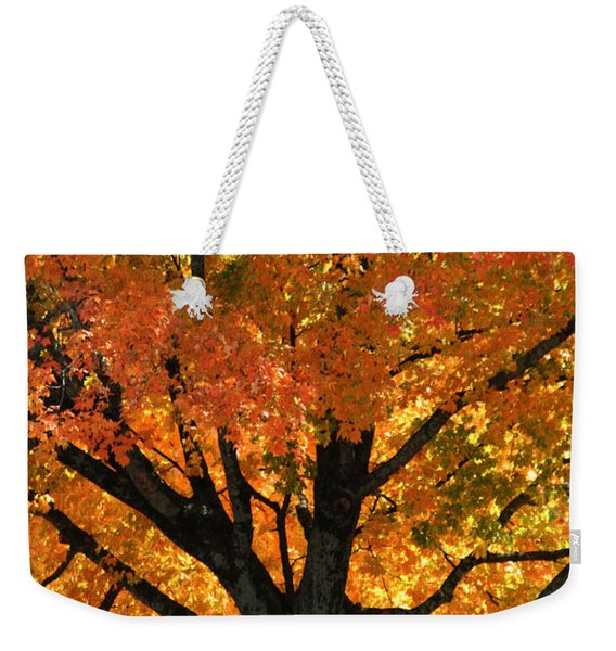Maple Hill Maple In Autumn Weekender Tote Bag