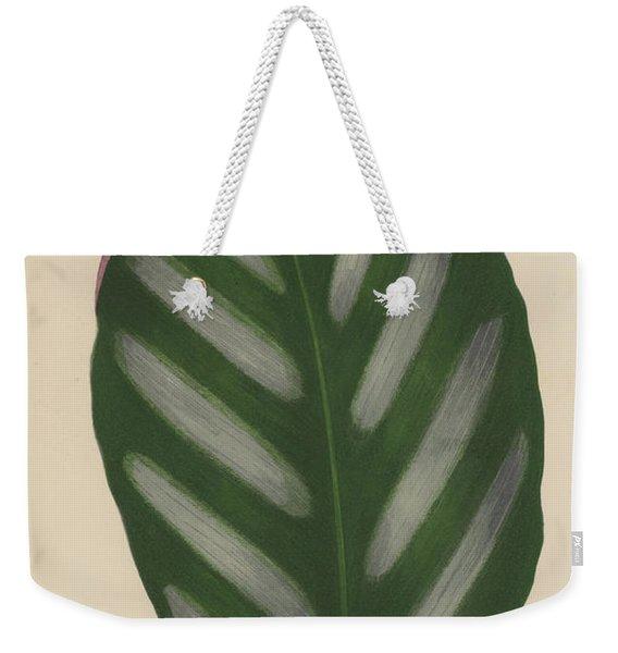 Maranta Porteana Weekender Tote Bag
