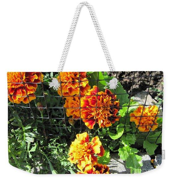 Marigolds In Prison Weekender Tote Bag