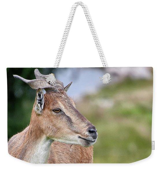 Markhor Weekender Tote Bag