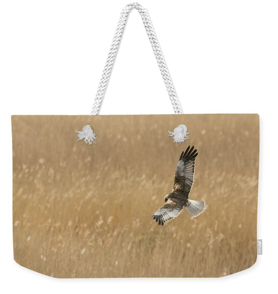 Marsh Harrier Weekender Tote Bag