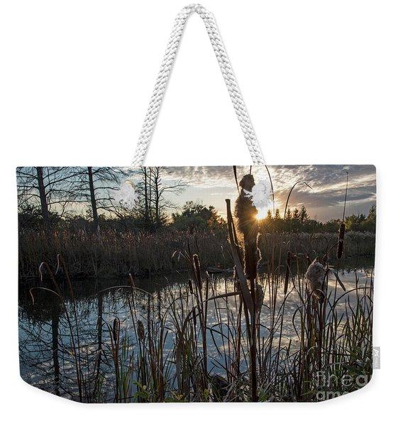 Marsh-pond-rawlinsonpark Weekender Tote Bag