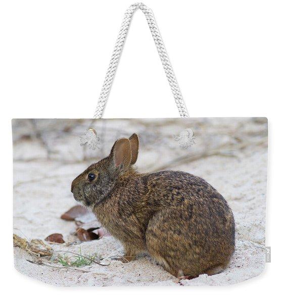 Marsh Rabbit On Dune Weekender Tote Bag