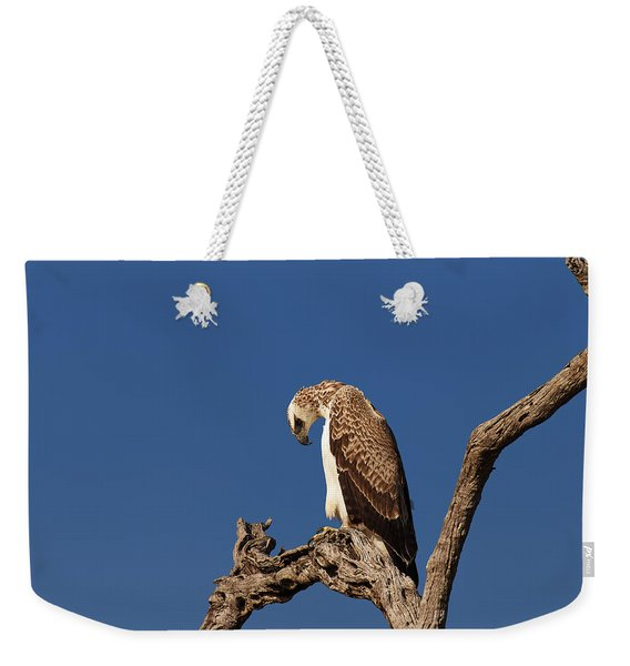 Martial Eagle Weekender Tote Bag
