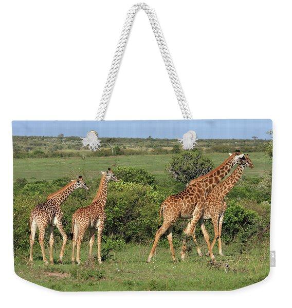 Masai Mara Giraffe Family   Weekender Tote Bag