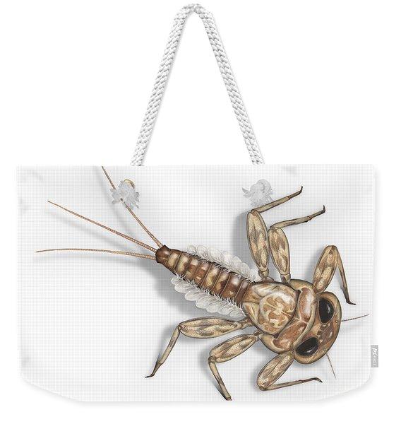 Mayfly Larva Nymph Rithorgena Ecdyonurus Venosus - Moscas De May Weekender Tote Bag