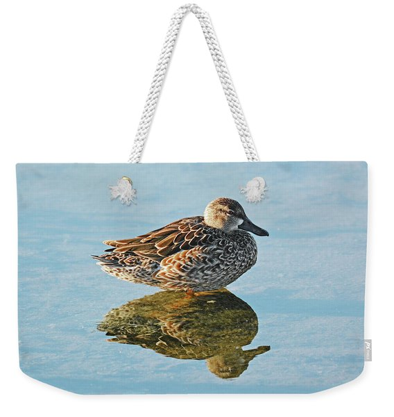 Weekender Tote Bag featuring the photograph Me And My Shadow by Sally Sperry