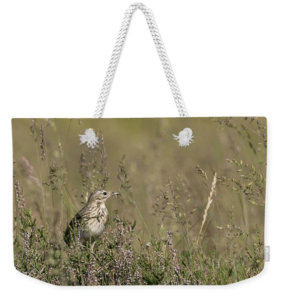 Meadow Pipit Weekender Tote Bag