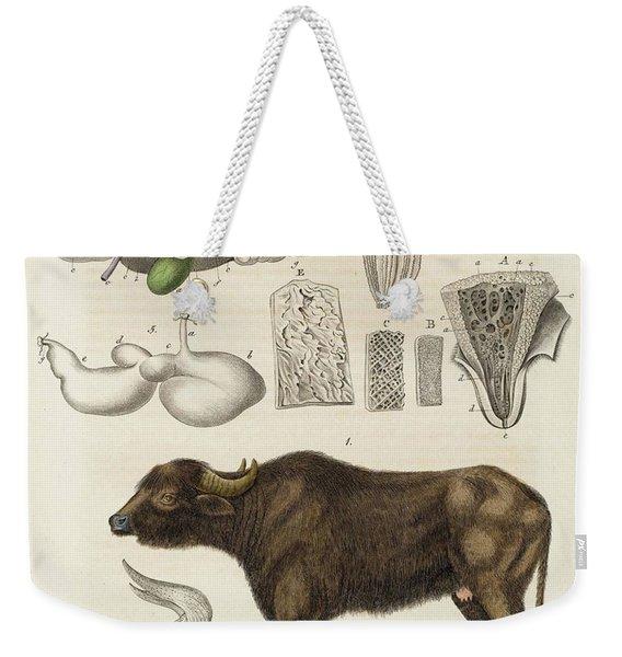 Medical Zoology Or Fair Presentation Weekender Tote Bag