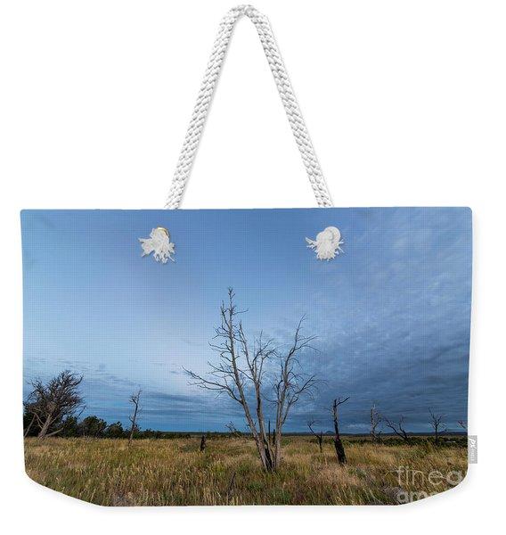 Mesa Verde At Dawn Weekender Tote Bag