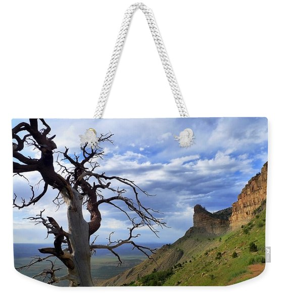 Weekender Tote Bag featuring the photograph Mesa Verde Mood by Skip Hunt