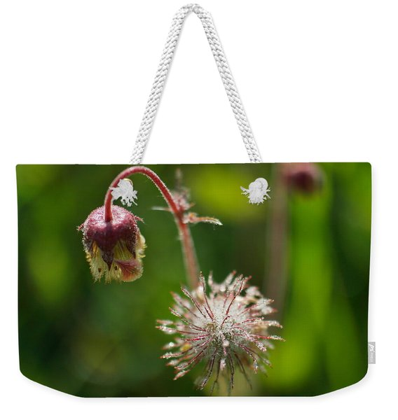 Microcosm Of Beauty Weekender Tote Bag