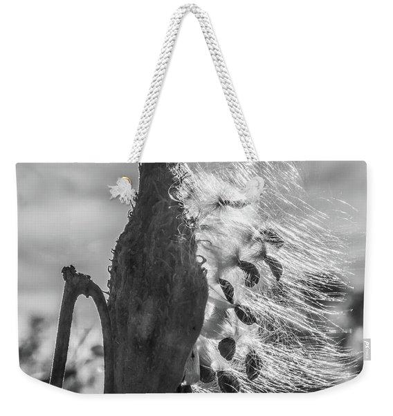 Milkweed Pod Back Lit B And W Weekender Tote Bag