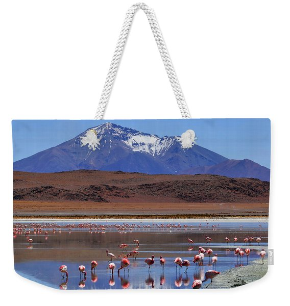 Weekender Tote Bag featuring the photograph Mirage by Skip Hunt