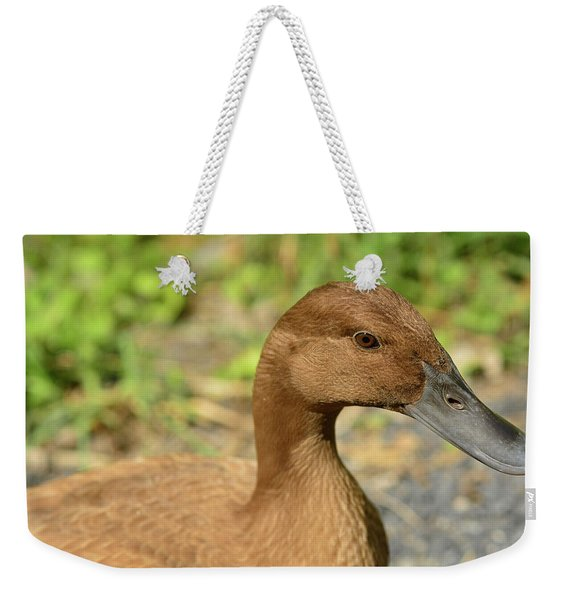 Weekender Tote Bag featuring the photograph Miss Brown Eyes by Nancy De Flon