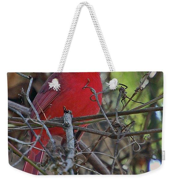 Mister Cardinal Weekender Tote Bag