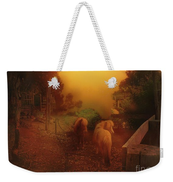 Misty Sundown Weekender Tote Bag
